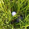 ラフからのアプローチで注意する3つのこと!【UGMゴルフスクールコスパ豊中少路】