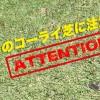 5月のプレーは芝生に注意?!【UGMゴルフスクールジェクサー錦糸町店】