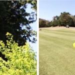 風を読むための方法【UGMゴルフスクール高槻店】