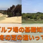 【ゴルフ場の基礎知識】季節によって芝の生え方が違うってご存知でした??【UGMゴルフスクールジェクサー錦糸町店】