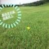 夏ラフ【UGMゴルフスクール/ジェクサー錦糸町店】