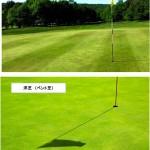 芝の種類【UGMゴルフスクール高槻店】