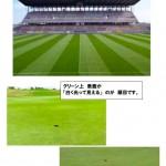 サッカーワールドカップと芝目【UGMゴルフスクール/セントラルフィットネス平野店】