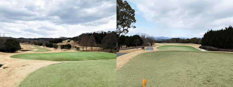 冬のゴルフコース4