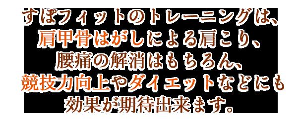 s_3_index_tx19